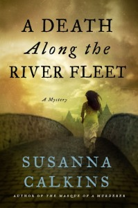 River Fleet cover
