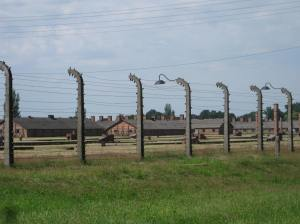 Looking into Birkenau Concentration Camp