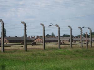 Looking into Birkenau Concentration Camp