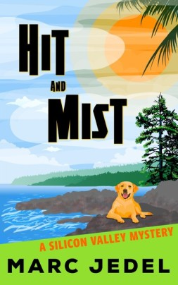 HIT AND MIST COVER